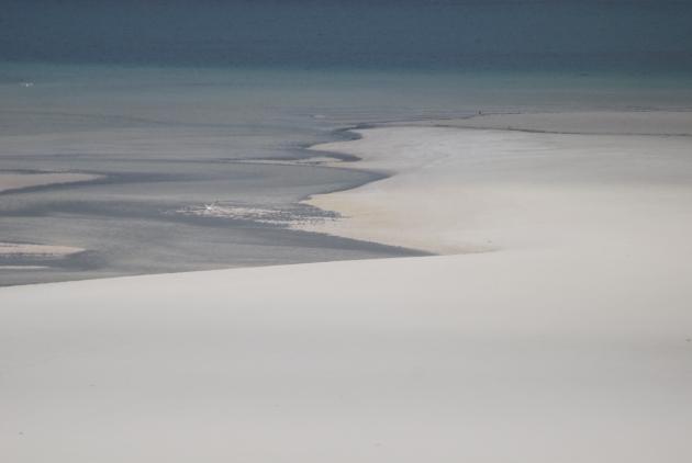 Inky Tide