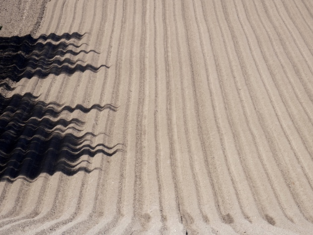 Ploughed field with tree shadows