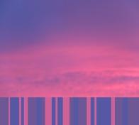 Palette pink2